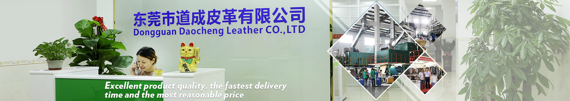 Dongguan Daocheng Leather Co., LTD